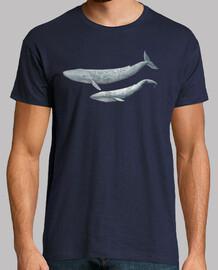 chemise homme baleine bleue (balaenoptera musculus)