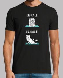 chien maltais yoga inhaler exhaler