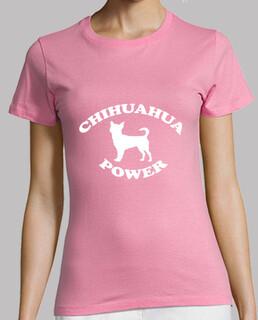 chihuahua macht