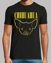 Chihuahua Nirvana