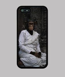 Chimpancé budista