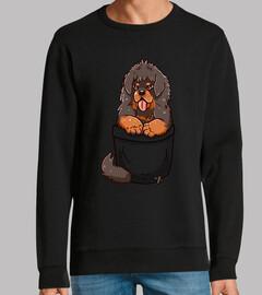 chiot mastiff tibétain de poche