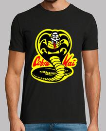 Cine - Cobra Kai