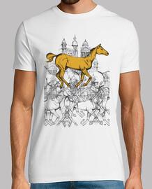 città di cavallo
