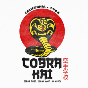 Camisetas Cobra Kai (version blanco)