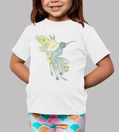colibrì n ° 1