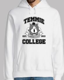 collège temmie
