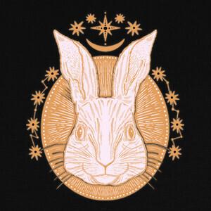 Camisetas Conejo brujería
