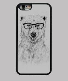 connaisseur bear