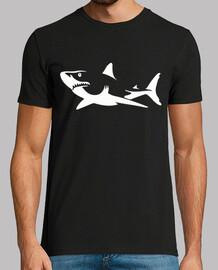 contorno di squalo chiaro