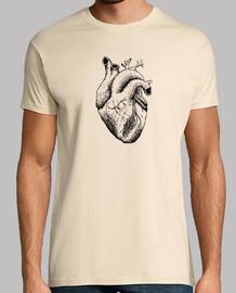 Corazón real b ch
