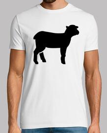 cordero de las ovejas