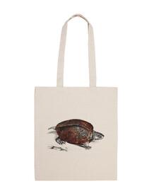 cosmico turtle 1