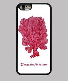 cover iphone 6 corallo rosso venus (flabellum gorgonie)
