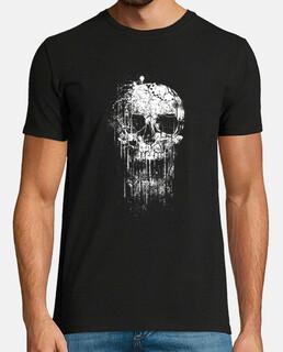 cranio fresco