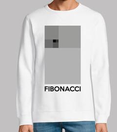 Cuadrados Fibonacci