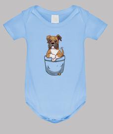 cucciolo di boxer carino tascabile