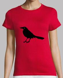 Cuervo Allan Poe