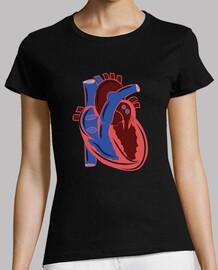 cuore human