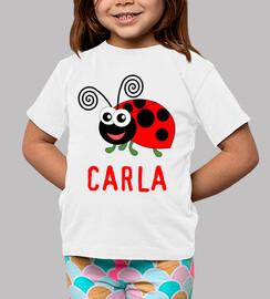 Customizable ladybug
