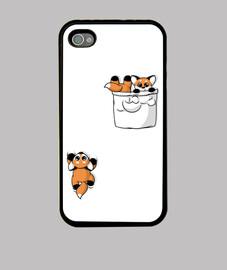 Cute Pocket Foxes