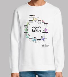 cycle de krebs (origines de la lumière)
