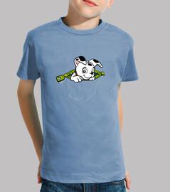 Dalmatian pocket