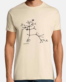Darwin Tree of life