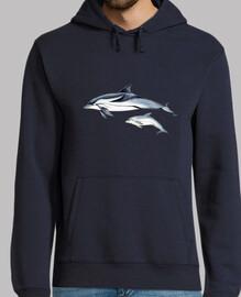 dauphin rayé (stenella coeruleoalba) jersey