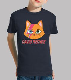 David Bowie parodia Gato