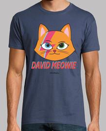 david bowie parody cat