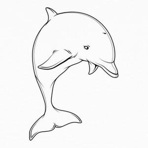 Camisetas Delfín