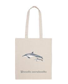 Delfín acróbata (Stenella longirostris) bandolera