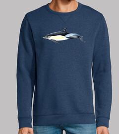 Delfín común (Delphinus delphis)