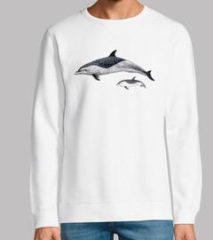Delfín moteado pantropical