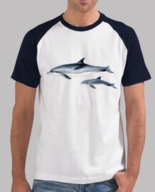 Delfines moteados del Atlántico camiseta béisbol
