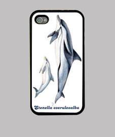 delfini (stenella coeruleoalba) iphone 4
