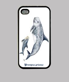 delfino risso copertura iphone di risso 4
