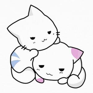 Tee-shirts Deux chats mignons