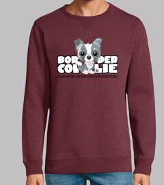 dg big teste b order collie merle