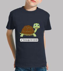 di tartaruga non morde