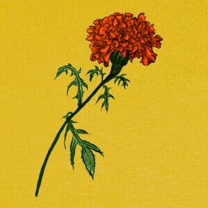 T-shirt disegno a inchiostro fiore di calendula