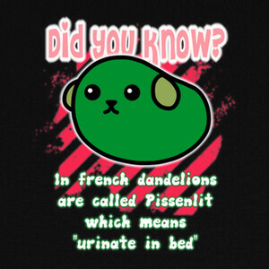 Did you know? 1 T-shirts
