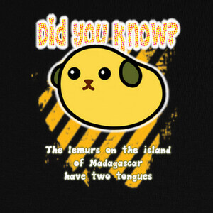 Did you know? 12 T-shirts