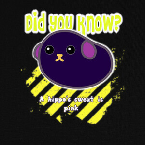 Did you know? 2 T-shirts