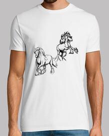 disegno cavalli