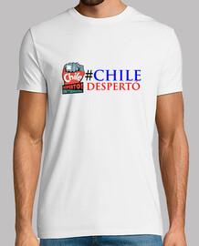 Diseño Chile Despertó