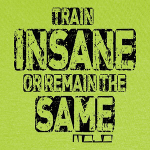 Camisetas Diseño Train Insane