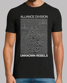 division Alliance