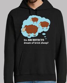 Do architects dream of brick sheep